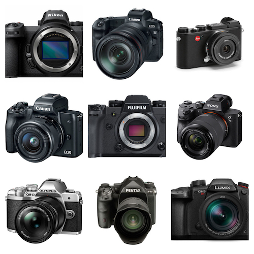 The Best Still Cameras for Dynamic Range, Ranked