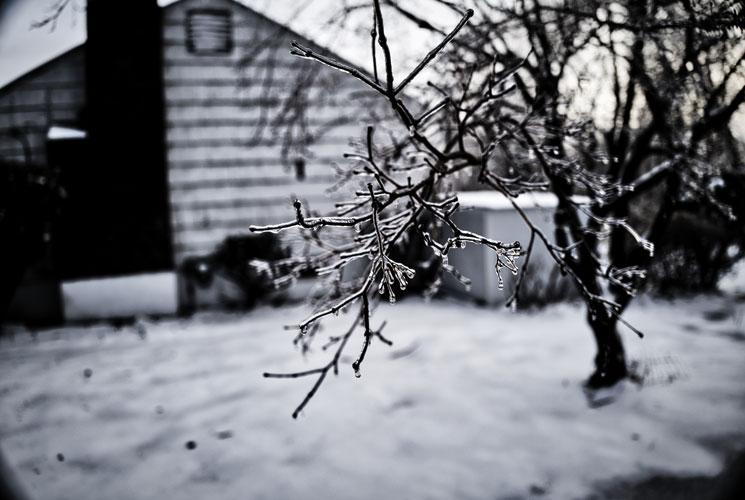 Camera Review: Leica Q2
